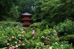 Обои Традиционная японская пагода в зеленом парке, Киото / Kyoto, Япония / Japan