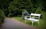 Обои Белая скамейка в летнем парке