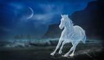 Обои Ледяная лошадь скачет по замороженному берегу моря, в ночи, by Peter Fischer