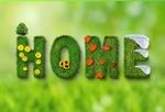 Обои На зеленом фоне надпись home / дом