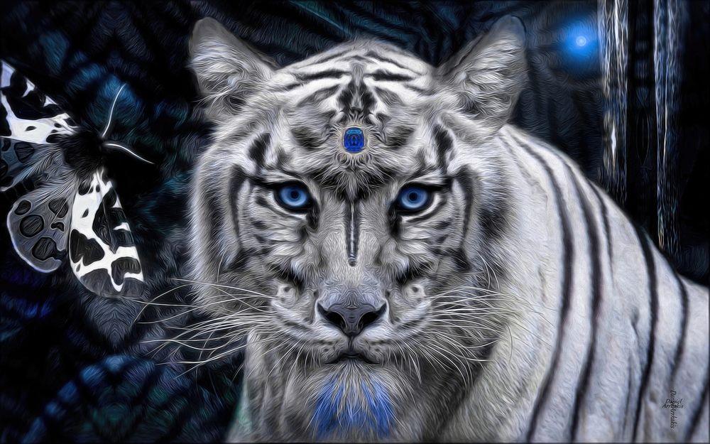 Картинки белый тигренок с голубыми глазами, день матери
