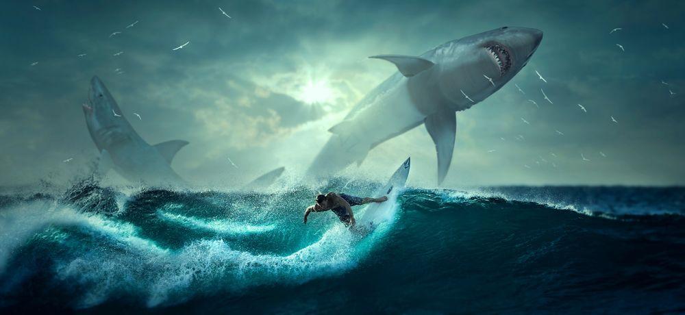 Обои для рабочего стола Серфер в океане на фоне выпрыгнувших из воды акул, by Stefan Keller