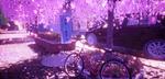 Обои Велосипед стоит возле цветущей сакуры на улице города