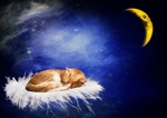 Обои Рыжая кошка сладко спящая на пуфике, парящем в ночном небе, Луна на заднем плане, by Dorothe