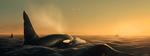 Обои Касатки в море на фоне заката, by Ciorano