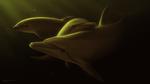 Обои Семейство дельфинов, by Ciorano