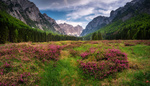 Обои Прекрасный небольшой луг между высокими горами в Юлийских Альпах, фотограф Ales Krivec