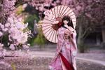 Обои Куколка в традиционном наряде стоит возле цветущих веточек сакуры