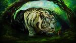 Обои Огромный белый тигр смотрит на девушку в лесу, by Oliver30fi