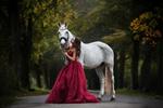 Обои Девушка в длинном платье стоит рядом с лошадью. Фотограф Mona Hоhler