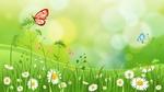 Обои Нежный фон с бабочками на ромашках