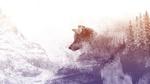 Обои Силуэт огромного волка, выныривающего из заснеженного леса, by Yuri_B
