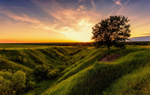 Обои Свет летнего вечера, фотограф Алексей Малыгин