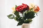Обои Красные и светлые розы в вазе
