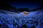 Обои Одинокий дом в окружении слегка заснеженной природы. Фотограф Albena Markova