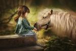 Обои Девочка кормит пони, фотограф Бармина Анастасия
