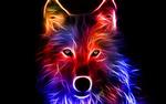 Обои Цветной абстрактный волк