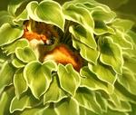 Обои Щенок за листвой, by Pixxus