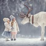 Обои Встреча двух девочек с оленем зимой, фотограф Елена Михайлова