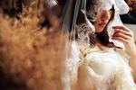 Обои Невеста в свадебной фате