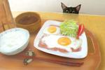 Обои Черный котенок заглядывающий на еду на столе, by Higeneko9