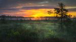 Обои Восход солнца в национальном парке Валкмуса, Финляндия / Volkmus, Finland