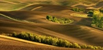 Обои Moravian Fields / Моравские поля, Czech Republic / Чешская республика, фотограф Jan Sieminski