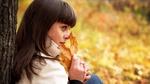 Обои Девушка сидим у дерева с осенним листочком в руке