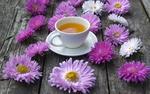 Обои Чашка с чаем на блюдце и астры на дощатой поверхности