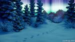 Обои Следы на снегу вдоль елей, Аляска, by JohnWulffe