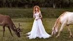 Обои Рыжеволосая модель Анастасия Жилина в шляпке и в белом кружевном платье позирует, стоя на лесной поляне между оленем и лошадью. Фотограф Наталья Машкова