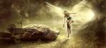 Обои Девушка-ангел в солнечном сиянии рядом с громадным мертвым воробьем, by Stefan Keller