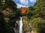 Обои Японский осенний пейзаж с водопадом, by Kohji Asakawa