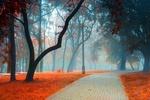 Обои Дорожка в осеннем парке в утреннем тумане