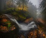 Обои Осень в Болгарии. Фотограф Краси Матаров