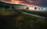 Обои Дорога через поля туманным вечером