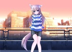 Обои Девушка в образе кошки стоит на фоне города