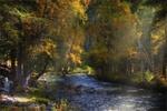 Обои Осенние лучи на рассвете у бурного ручья, Алтай, фотограф Художников Павел
