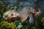 Обои Модель Катерина Ширяева лежит в цветах с бабочками, фотограф Мария Липина
