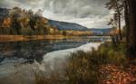 Обои Природа осенью на фоне летящих птиц в сумрачном небе, Кузбасс, Кемеровская область, фотограф Художников Павел
