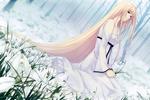 Обои Сион Нанацуки / Nanatsuki Shion из визуальной новеллы Caucasus ~Nanatsuki no Nie~, сидит на поляне подснежников в лесу, автор Sugina Miki