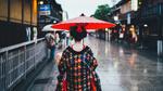 Обои Девушка с красным зонтом стоит на улочке города