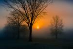 Обои Туманное утро, фотограф David Dai / Дэвид Дай