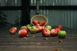 Обои Яблоки высыпались из корзины на деревянную поверхность