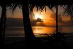 Обои Закат в тропиках, пальмы на переднем плане, by Jufri Derwotubun