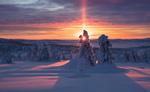 Обои Зимний закат солнца. Фотограф Jоrn Allan Pedersen