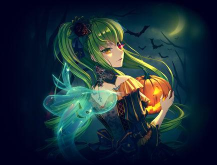 Конкурсная работа Си-си / C. C. из аниме Код Гиас: Восставший Лелуш / Code Geass: Lelouch of the Rebellion со светильником Джека на празднике Halloween / Хэллоуина