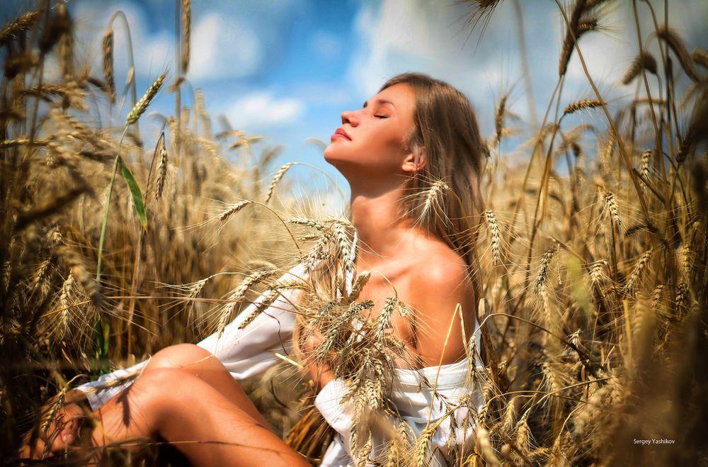 идеи для фотосессии в поле пшеницы хотите фотографироваться бассейне