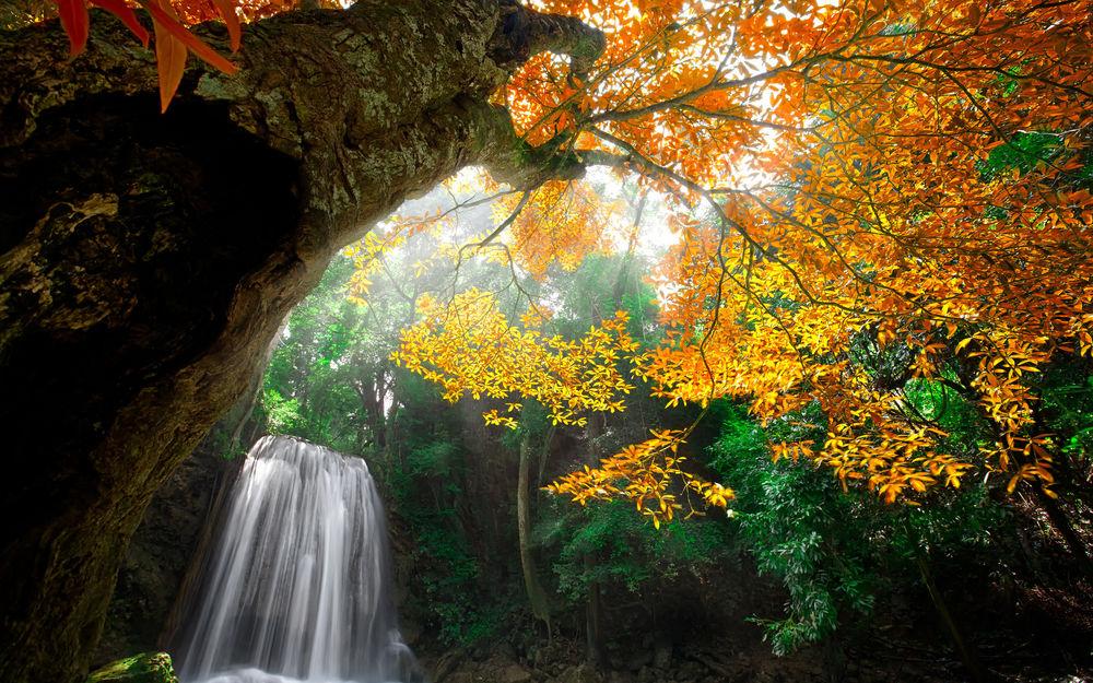 Обои для рабочего стола Лесной водопад в Канчанабури, Таиланд