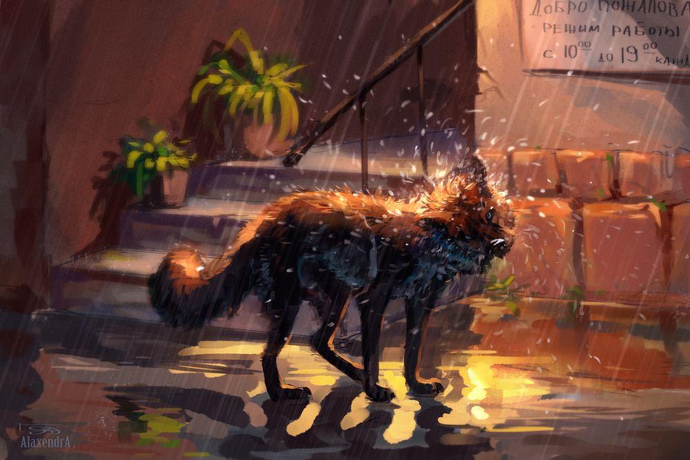Обои для рабочего стола Лиса на вечерней улице города под дождем, by AlaxendrA